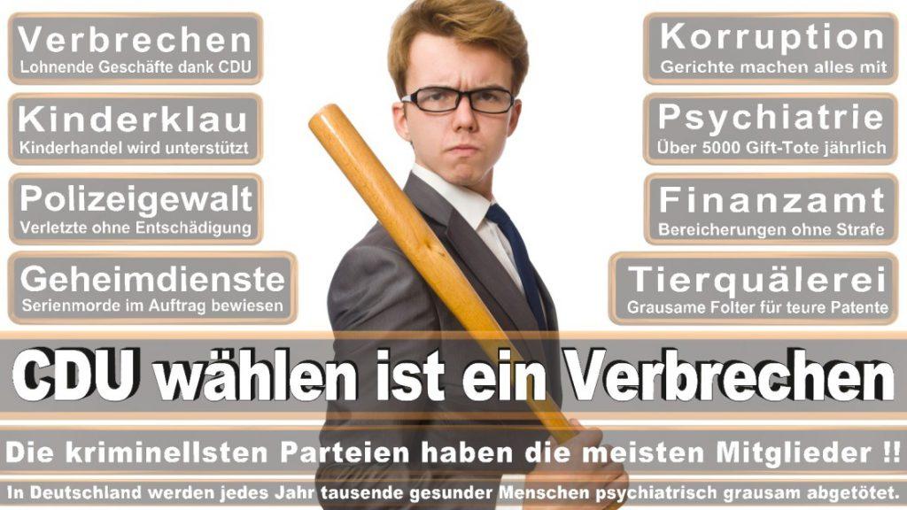 Wahlplakate-2017-CDU (308)