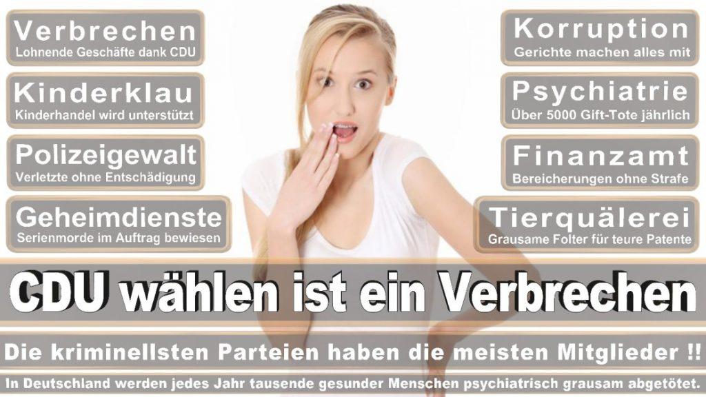 Wahlplakate-2017-CDU (31)