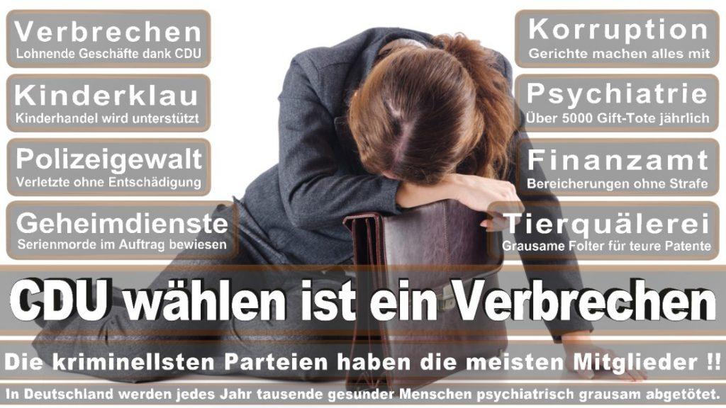 Wahlplakate-2017-CDU (310)