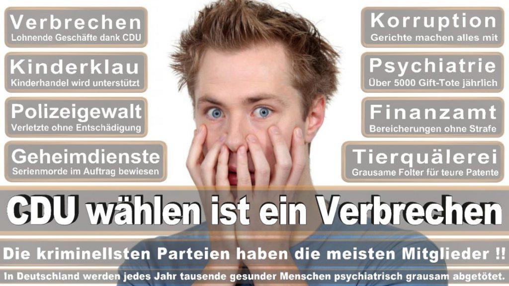 Wahlplakate-2017-CDU (311)