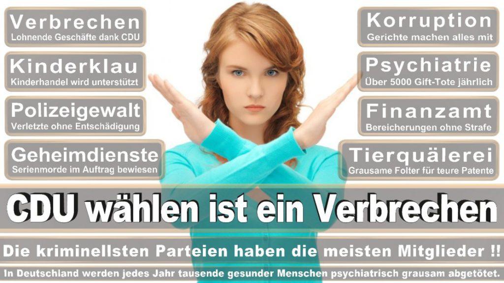 Wahlplakate-2017-CDU (312)