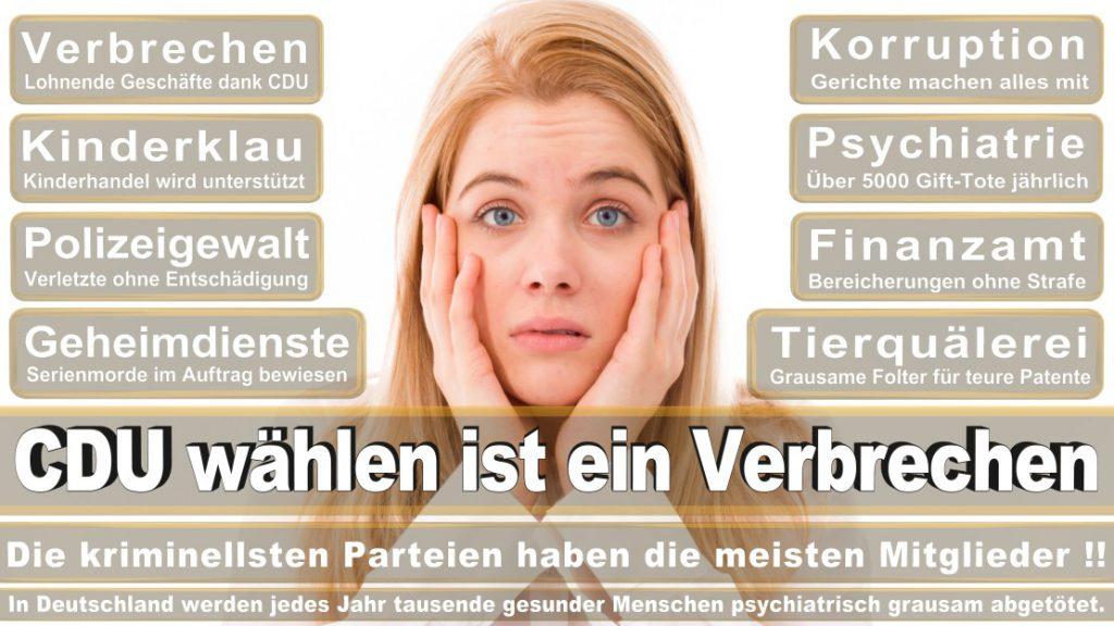 Wahlplakate-2017-CDU (313)