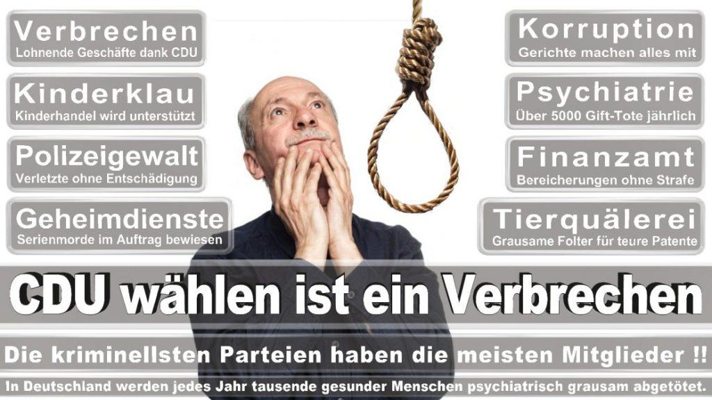 Wahlplakate-2017-CDU (314)