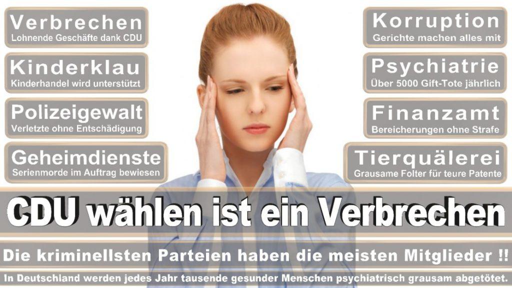 Wahlplakate-2017-CDU (315)