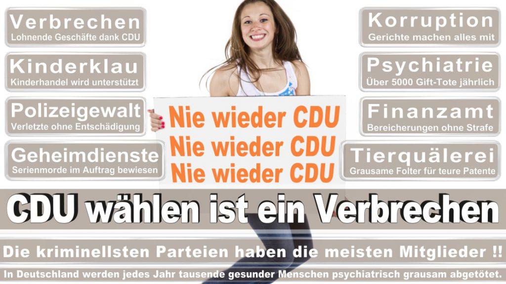 Wahlplakate-2017-CDU (316)
