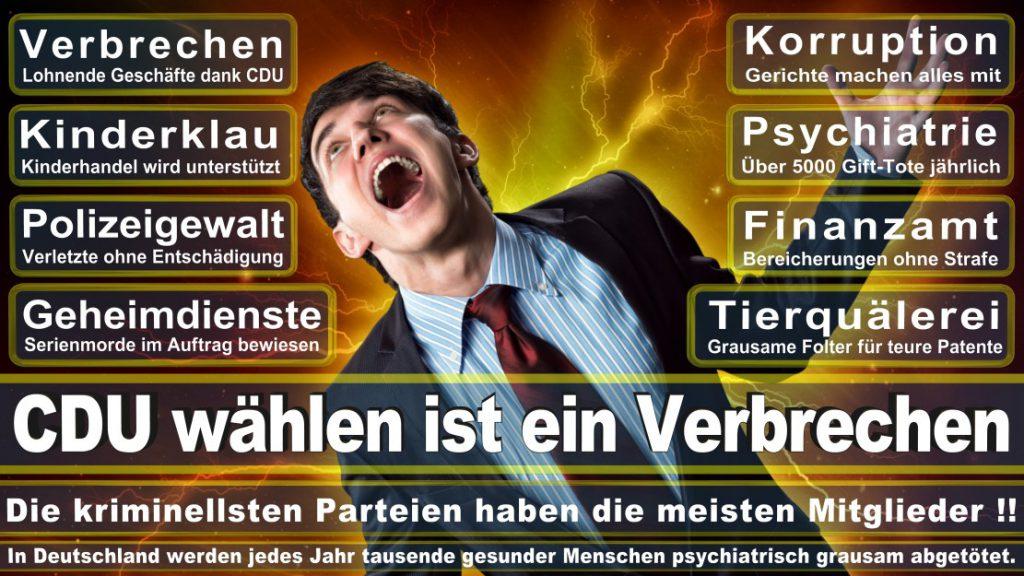 Wahlplakate-2017-CDU (317)
