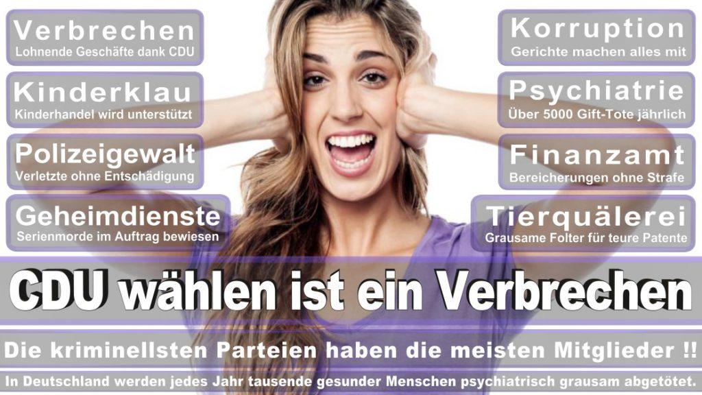 Wahlplakate-2017-CDU (318)