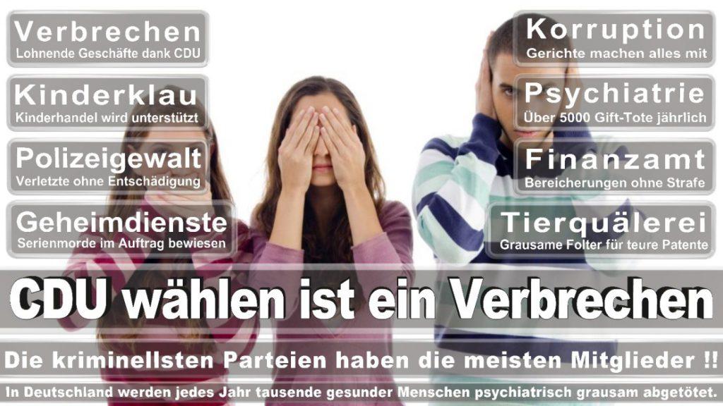 Wahlplakate-2017-CDU (319)