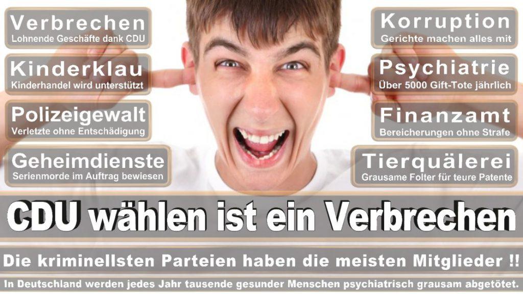 Wahlplakate-2017-CDU (32)