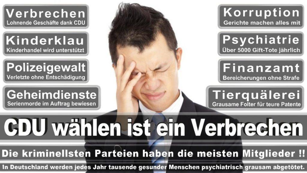 Wahlplakate-2017-CDU (320)