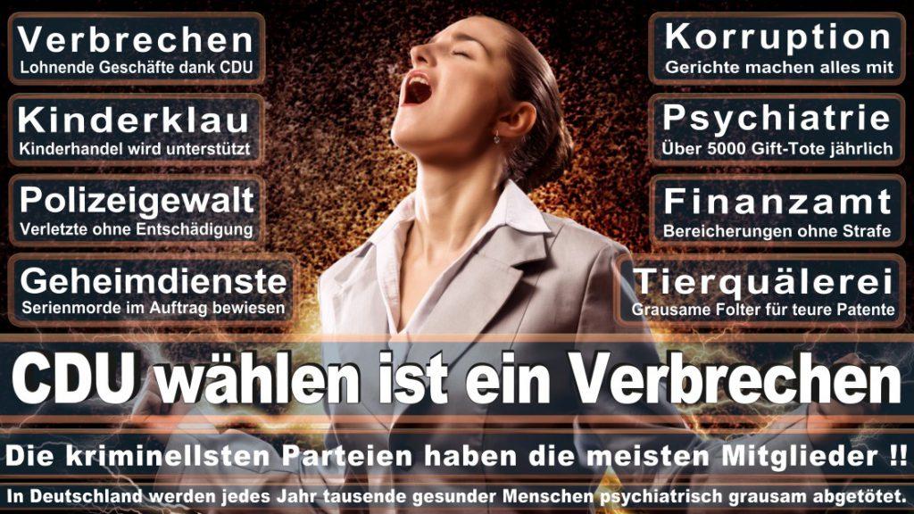 Wahlplakate-2017-CDU (321)