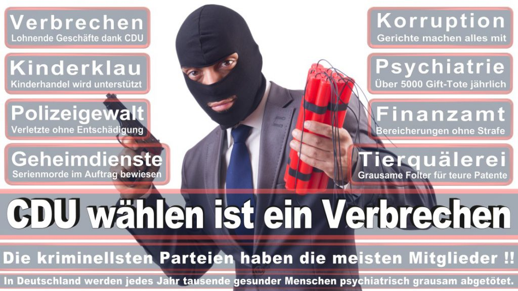 Wahlplakate-2017-CDU (322)
