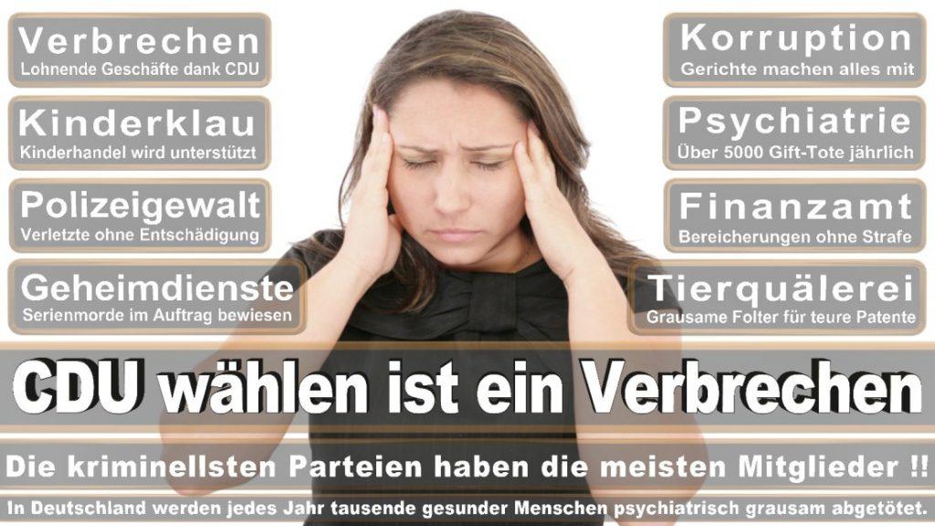 Wahlplakate-2017-CDU (323)