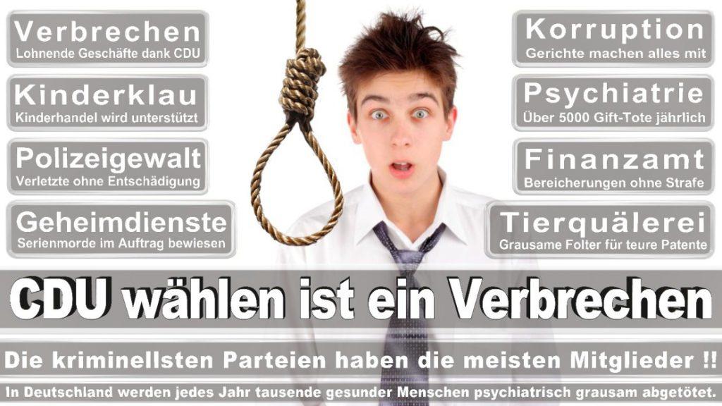 Wahlplakate-2017-CDU (324)