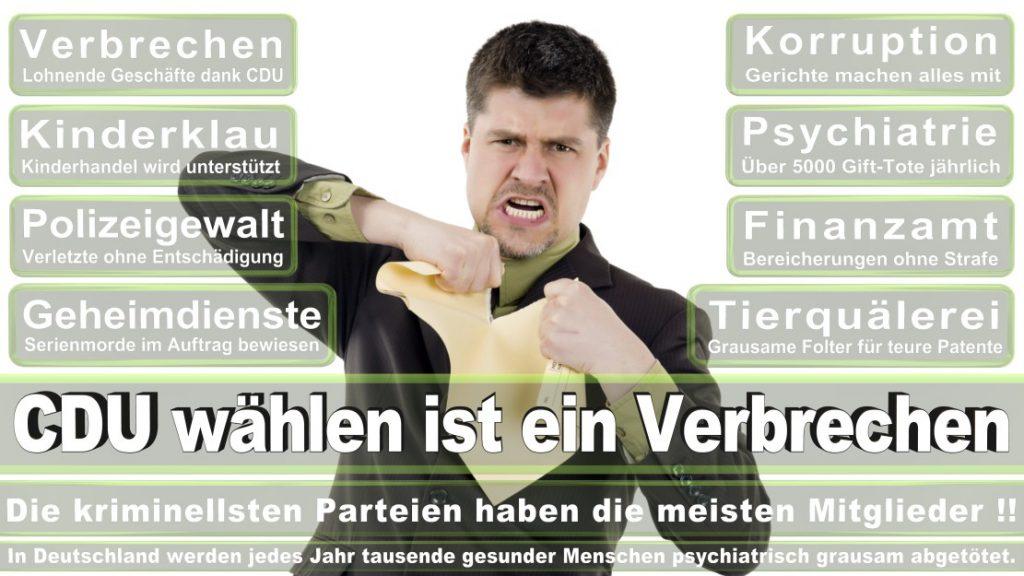 Wahlplakate-2017-CDU (325)