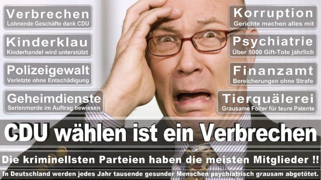 Wahlplakate-2017-CDU (327)