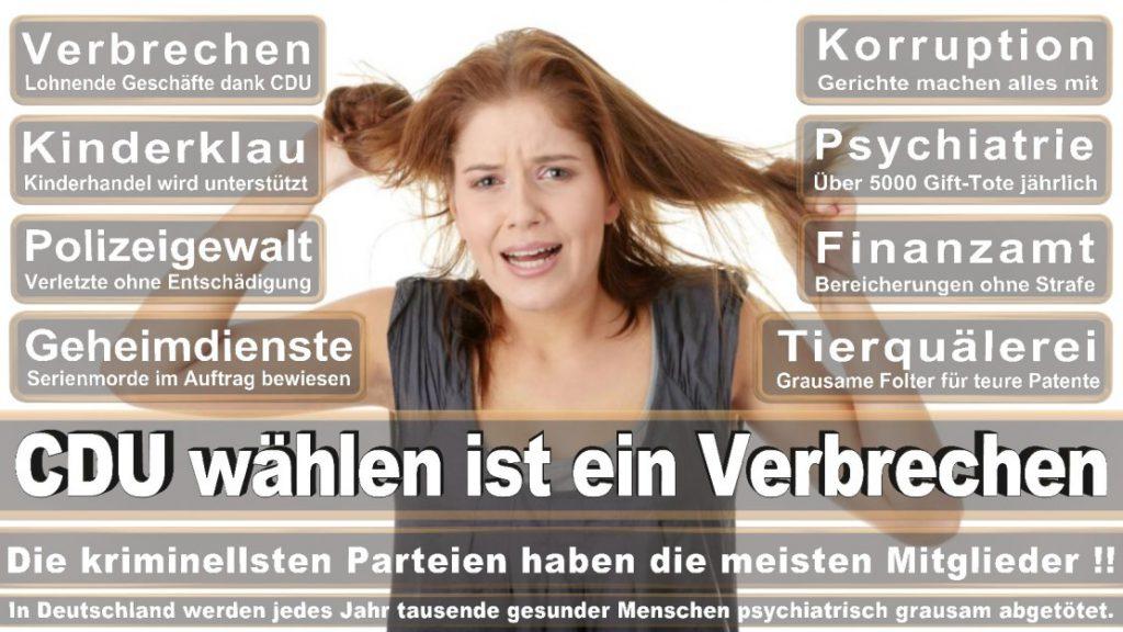 Wahlplakate-2017-CDU (328)