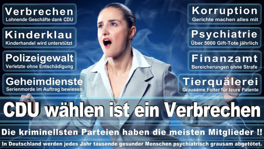 Wahlplakate-2017-CDU (329)