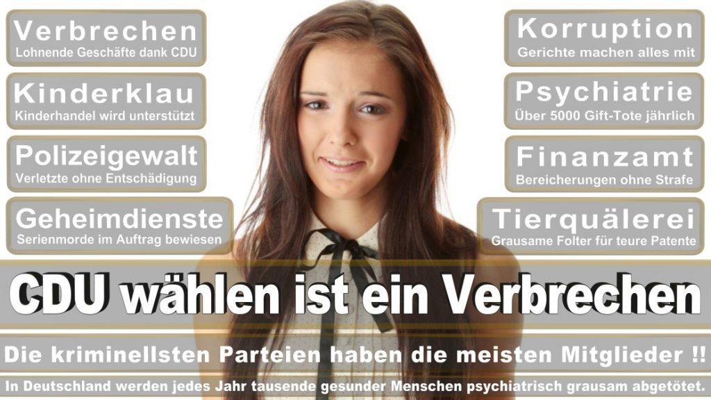 Wahlplakate-2017-CDU (33)