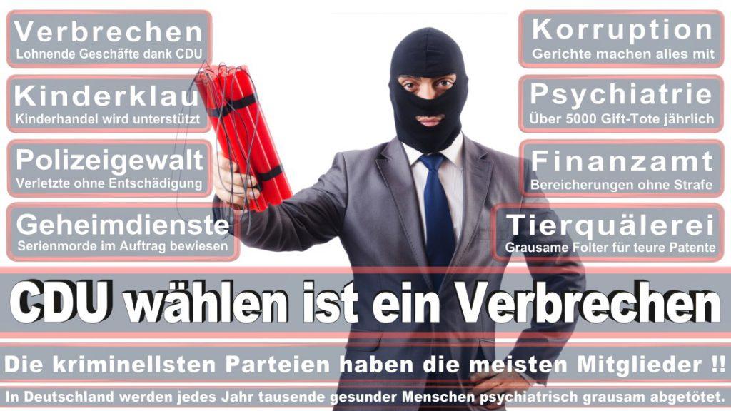 Wahlplakate-2017-CDU (330)