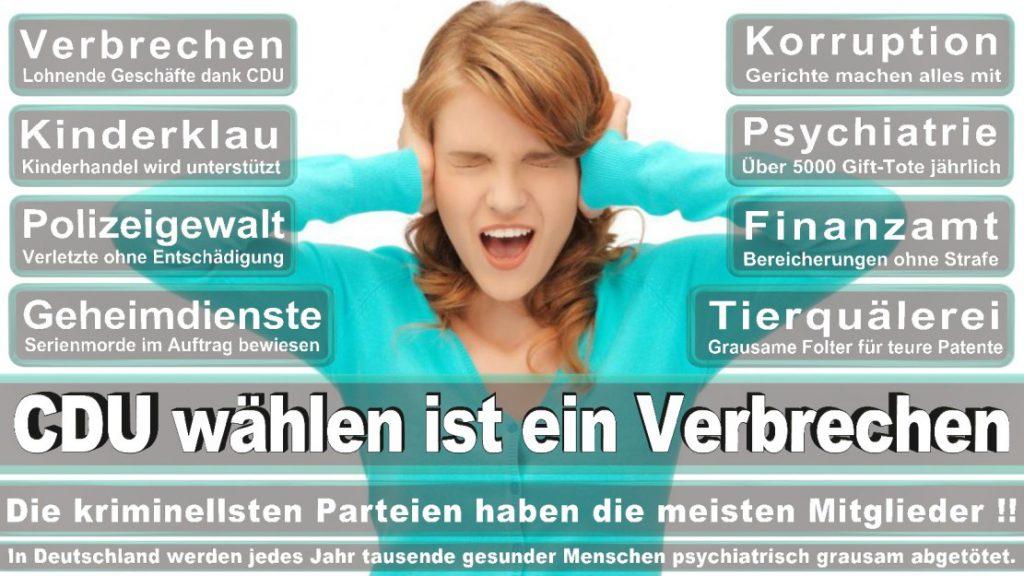 Wahlplakate-2017-CDU (331)