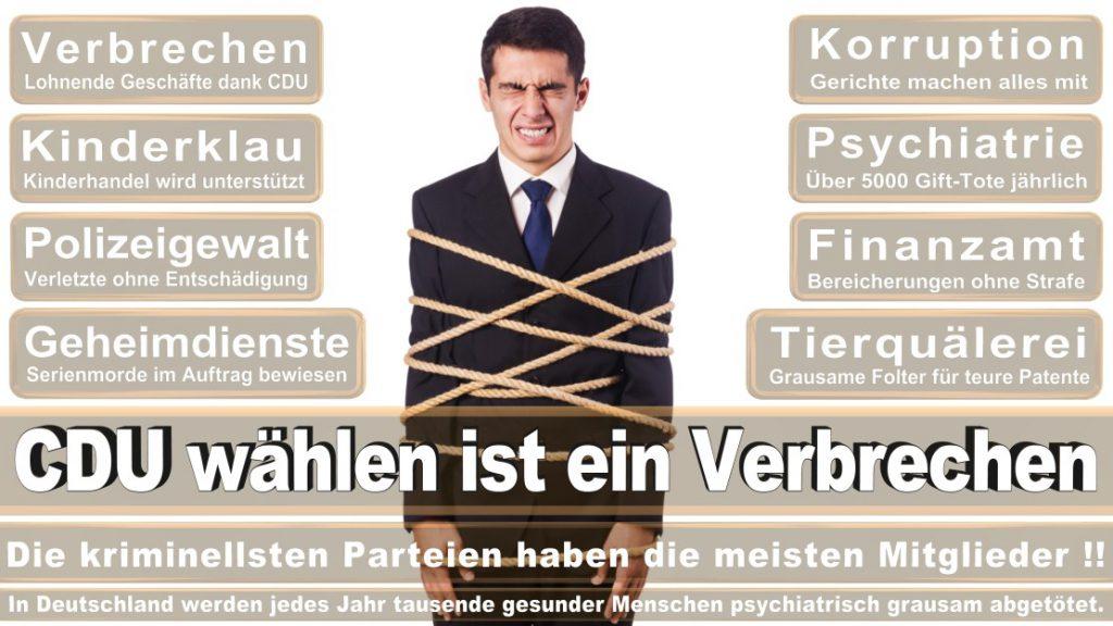Wahlplakate-2017-CDU (332)
