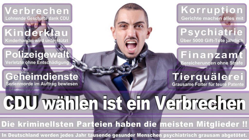 Wahlplakate-2017-CDU (333)