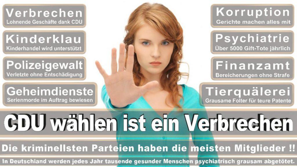 Wahlplakate-2017-CDU (334)