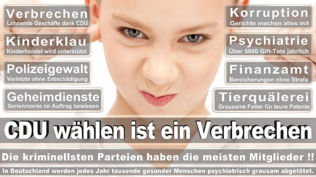 Wahlplakate-2017-CDU (335)