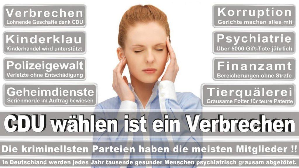 Wahlplakate-2017-CDU (336)