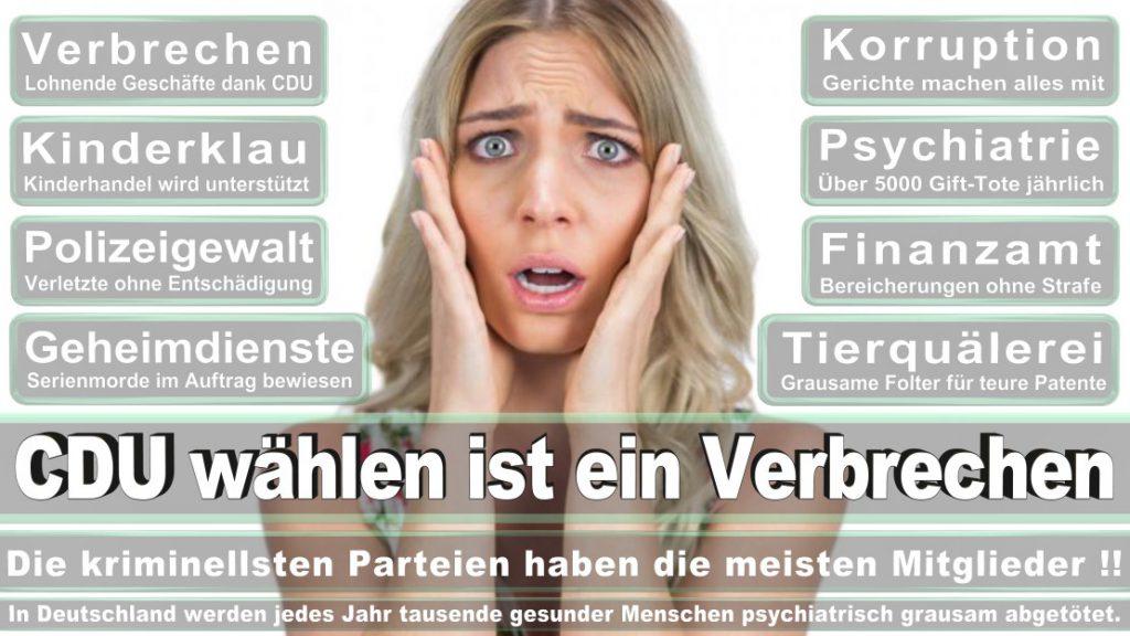 Wahlplakate-2017-CDU (337)
