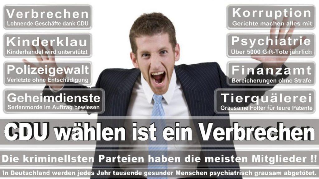 Wahlplakate-2017-CDU (338)