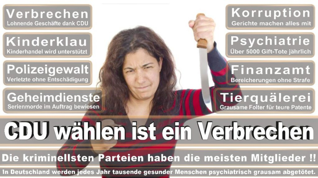 Wahlplakate-2017-CDU (339)
