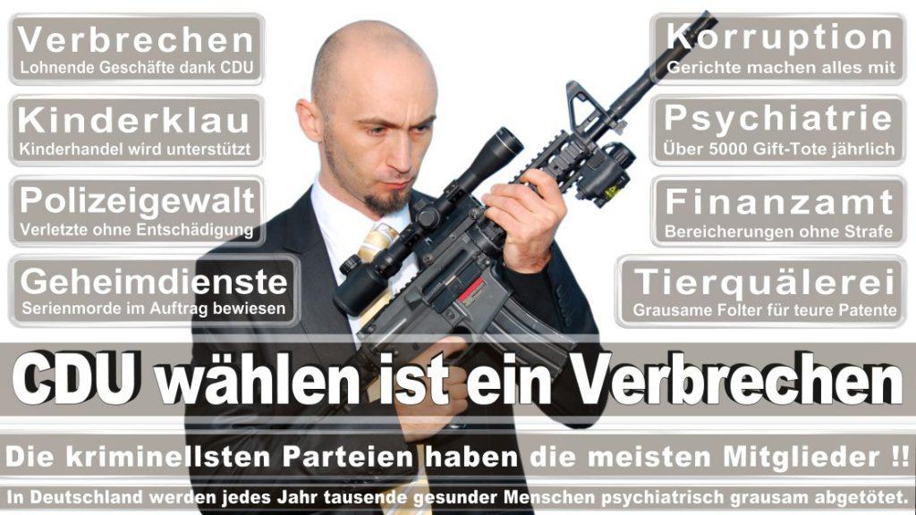 Wahlplakate-2017-CDU (34)