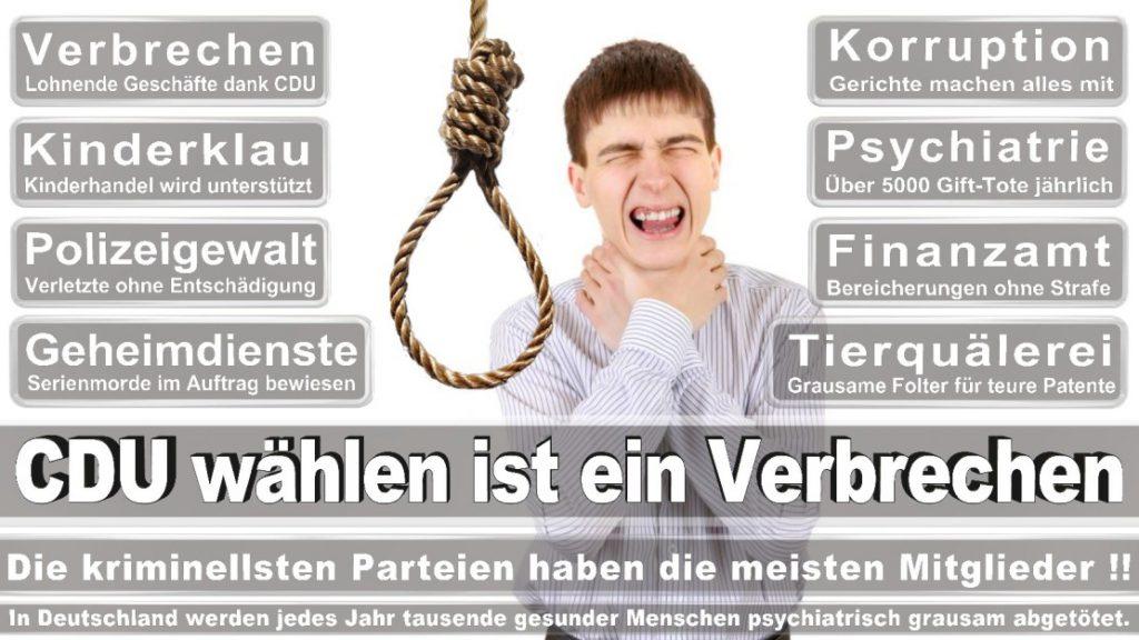 Wahlplakate-2017-CDU (341)