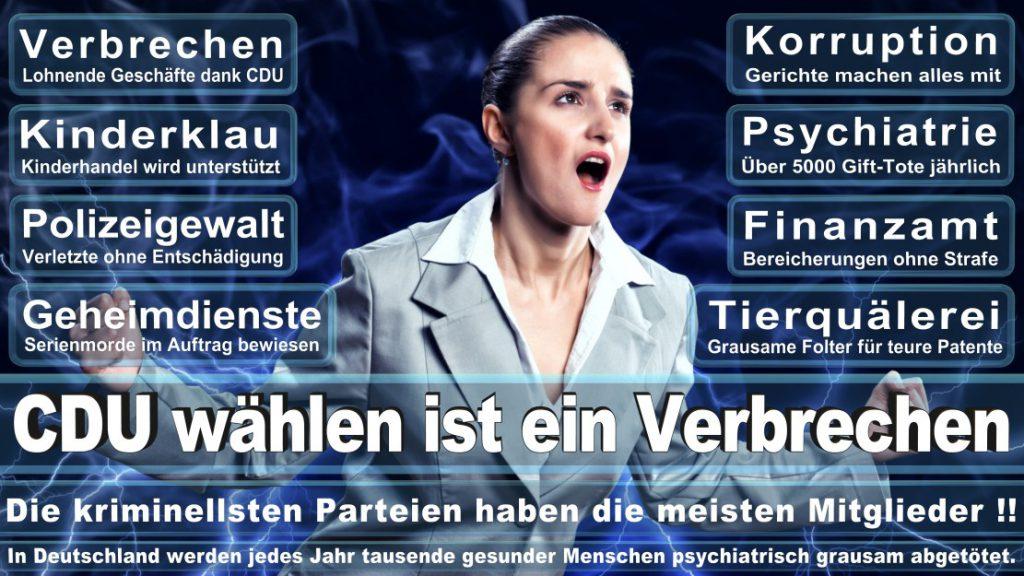 Wahlplakate-2017-CDU (342)