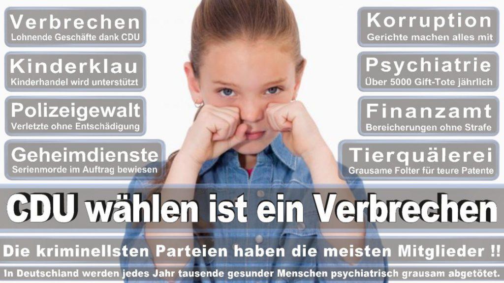 Wahlplakate-2017-CDU (343)
