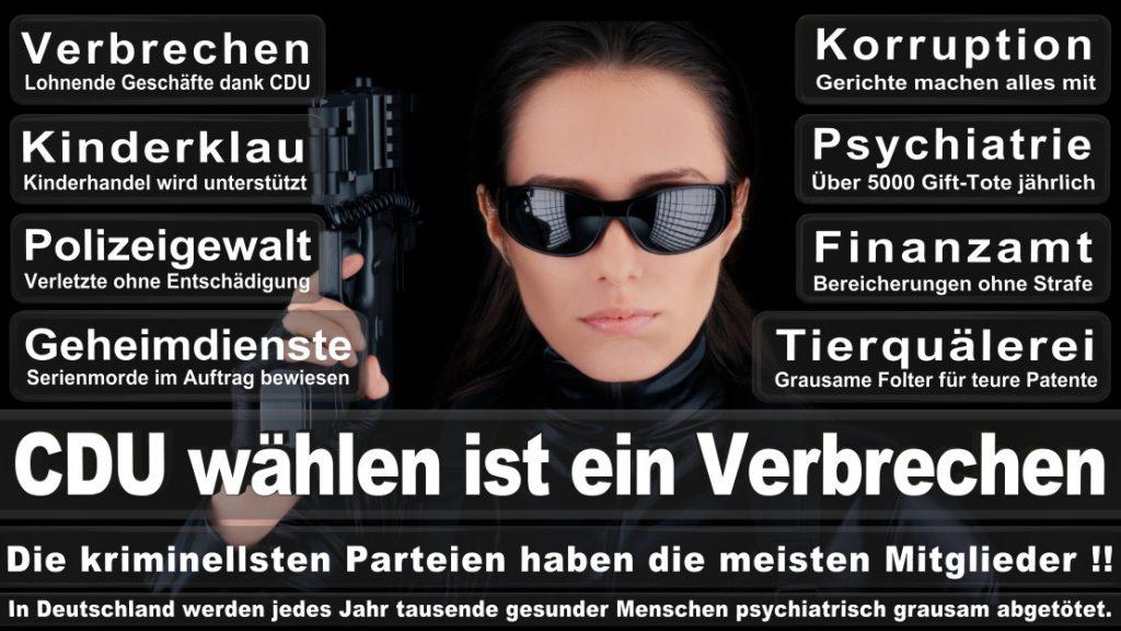 Wahlplakate-2017-CDU (344)