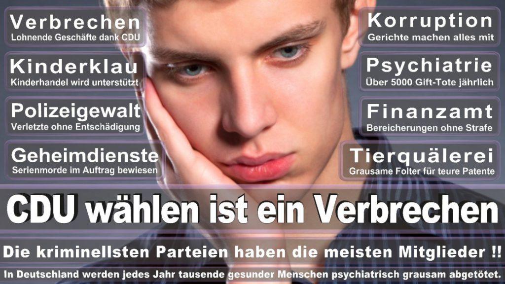 Wahlplakate-2017-CDU (345)