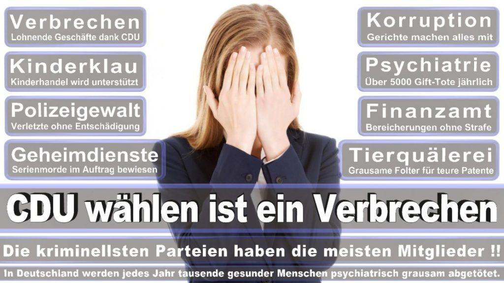 Wahlplakate-2017-CDU (346)