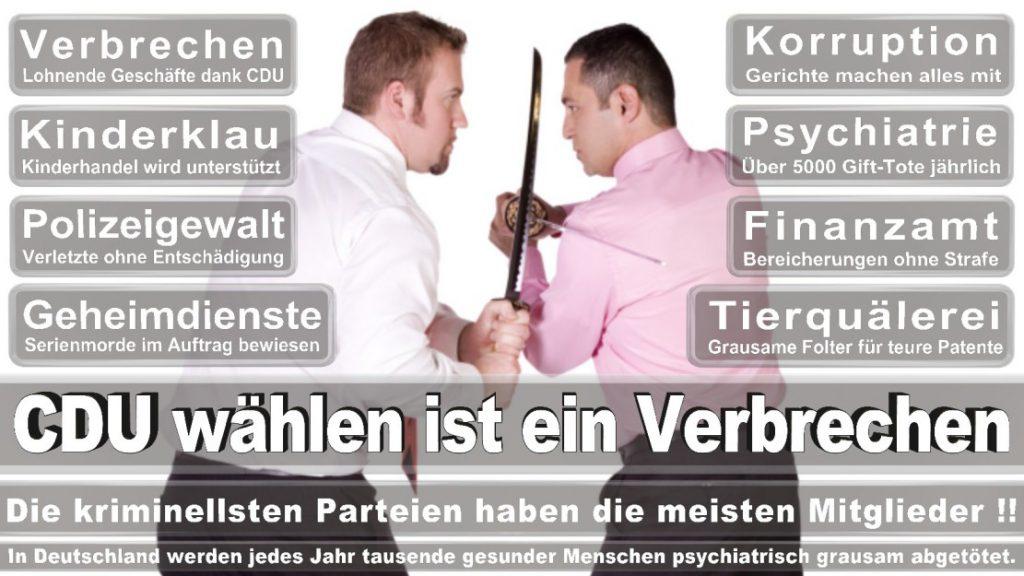 Wahlplakate-2017-CDU (347)