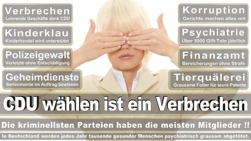 Wahlplakate-2017-CDU (348)