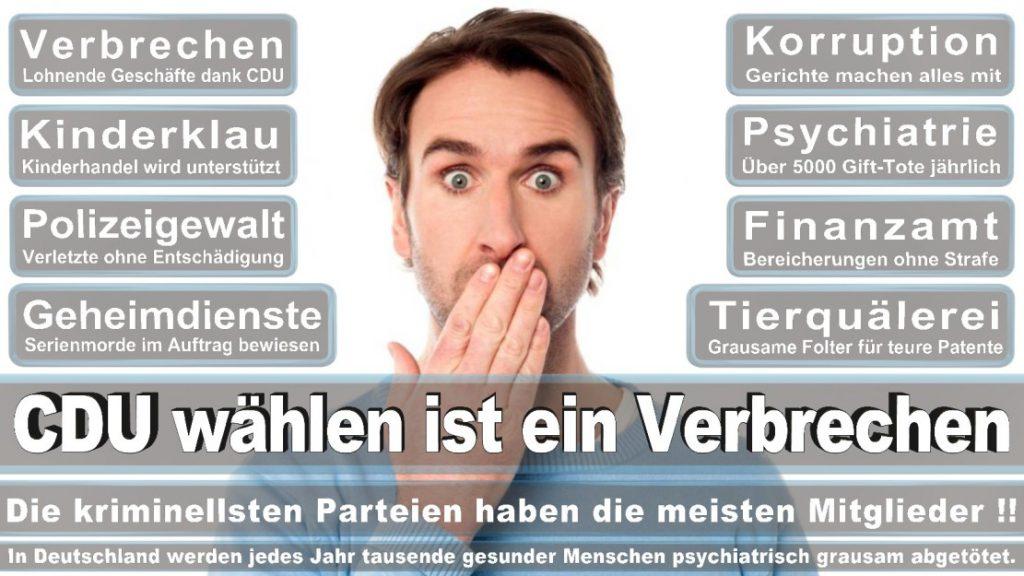 Wahlplakate-2017-CDU (349)