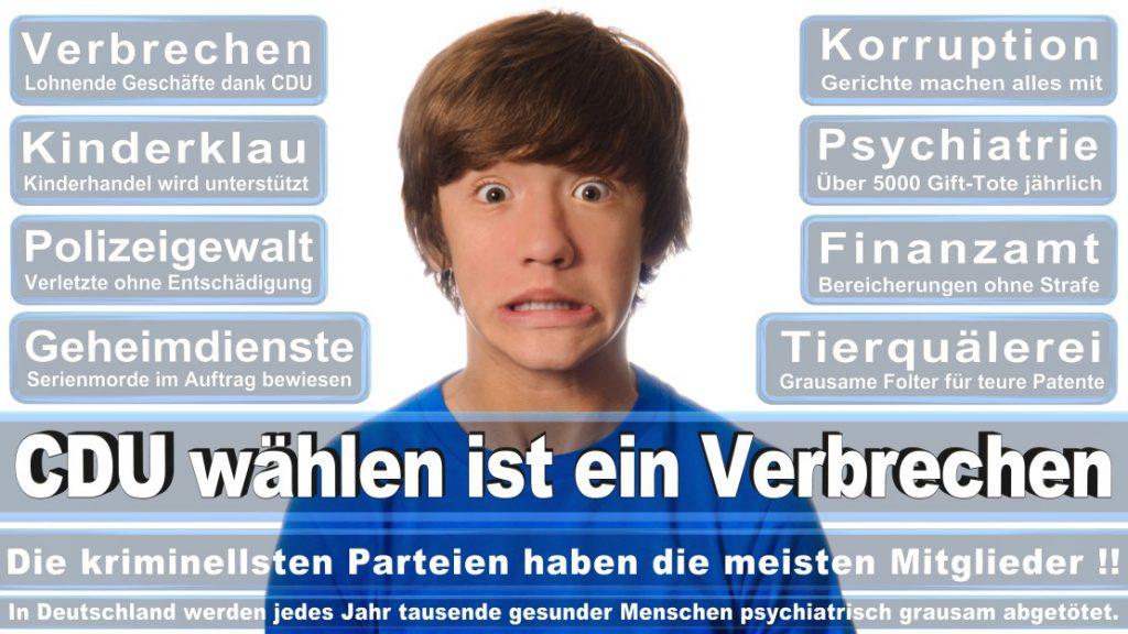 Wahlplakate-2017-CDU (35)
