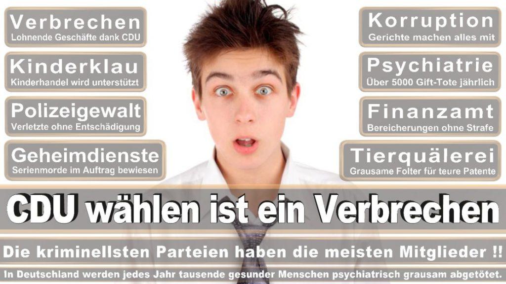 Wahlplakate-2017-CDU (350)
