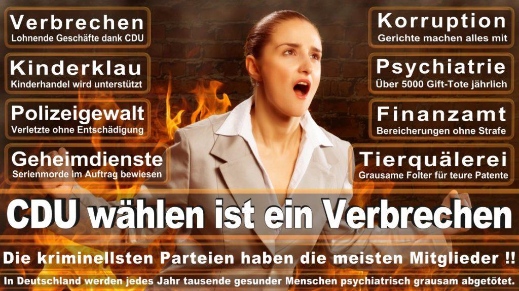 Wahlplakate-2017-CDU (351)