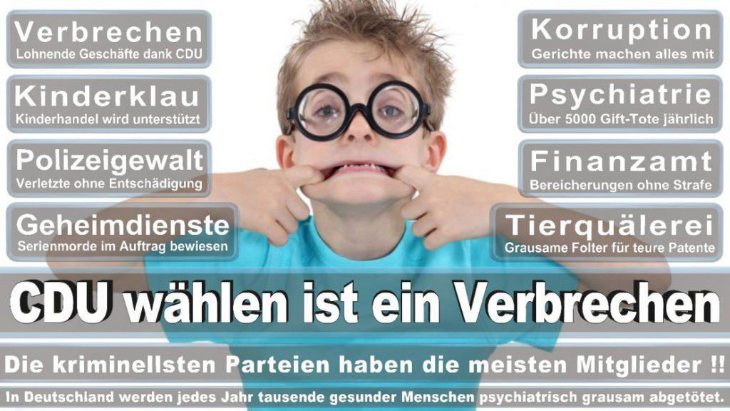 Wahlplakate-2017-CDU (352)