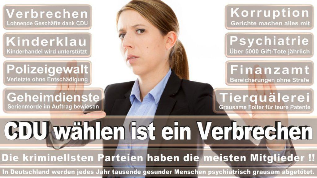 Wahlplakate-2017-CDU (353)