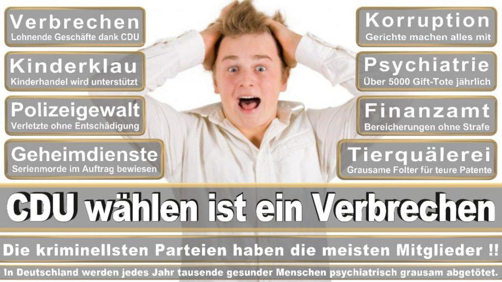 Wahlplakate-2017-CDU (354)