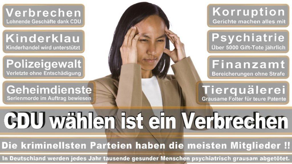 Wahlplakate-2017-CDU (355)